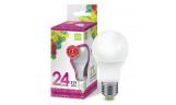 Лампа LED-A65 24Вт 220В Е27 6500К 2160Лм ASD